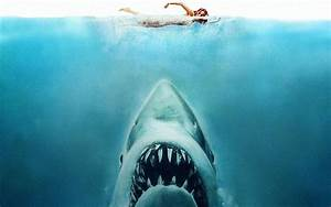 How Jaws nearly sank without trace, BRIAN VINER tells the ...