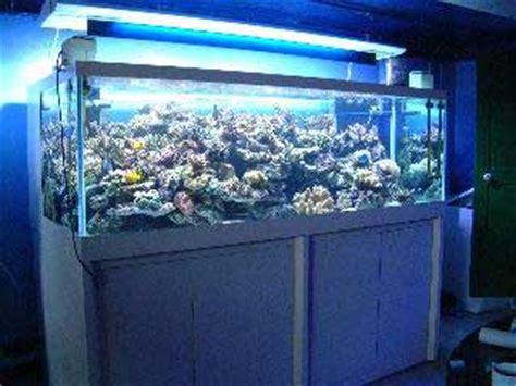aquarium recifal le bon coin