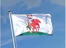 Buy Cardiff City Flag 3x5 ft 90x150 cm RoyalFlags