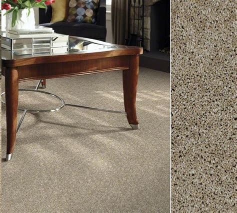 shaw carpet in our clear touch polyester made from