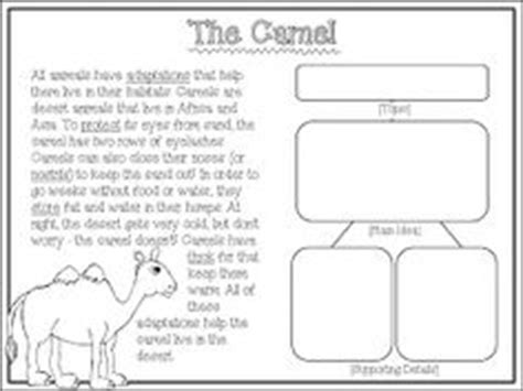 1000+ Images About Teaching Main Ideakey Details On Pinterest  Main Idea, Graphic Organizers