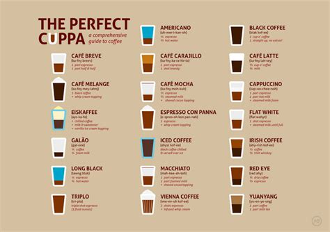The Perfect Cuppa: All Your Coffee Favourites   Infographic