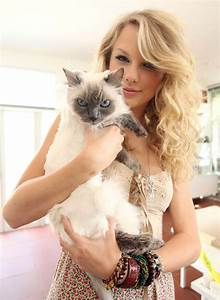 Taylor Swift With Cat Famous Pictures in HD 4K
