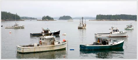 Boats And Harbors Online by Maine S Harbors Community Resource Resourceful Community