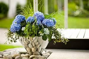 Tragehilfe Für Kübelpflanzen : k belpflanzen f r den schatten ~ Markanthonyermac.com Haus und Dekorationen