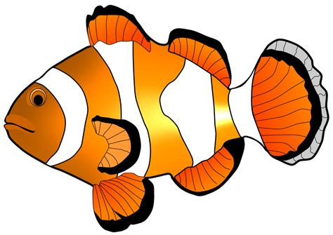 Clip Art Fish Clipart Free And Clipartandscrap