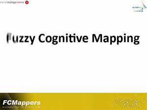 Fuzzy cognitive mapping