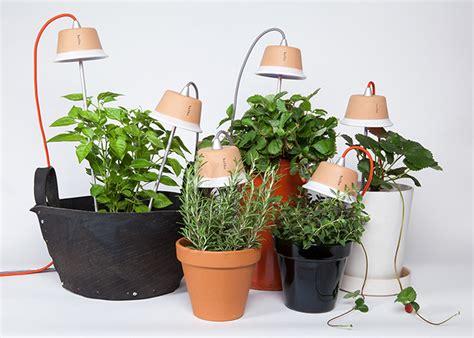 Bulbo Cynara And Quadra Led Lights Encourage Plant Growth