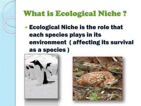 Ecological Niche Powerpoint Presentation