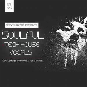 Soulful & Tech House Vocals | Sounds