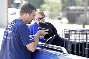 Helping People and Animals in Peril From Fires and Floods ...