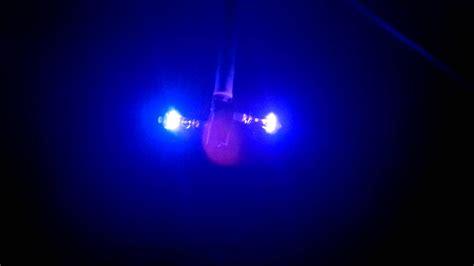 Black Light Bulb In Room  Wwwpixsharkcom Images